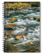 Fall Colors Stream Great Smoky Mountains Painted  Spiral Notebook