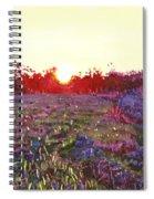 Farley Sunset Spiral Notebook