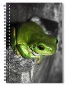 Fence Frog Spiral Notebook