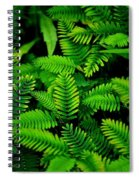 Ferns Spiral Notebook
