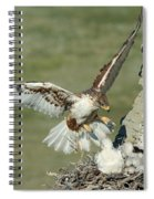 Ferruginous Hawk And Chicks Spiral Notebook