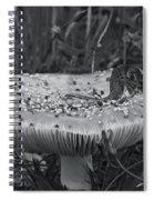 Field Mouse On Mushroom Cap  Spiral Notebook