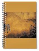 Film Noir Cornell Wilde Storm Fear 1956 Summer Storm Casa Grande Arizona 2004 Spiral Notebook