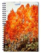 Flaming Aspens 2 Spiral Notebook
