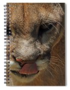 Florida Panther Spiral Notebook