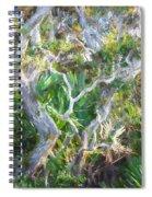 Florida Scrub Oaks Painted  Spiral Notebook