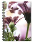 Flower Background Spiral Notebook