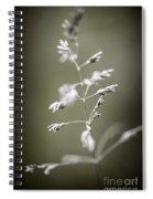 Flowering Grass Spiral Notebook