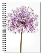 Flowering Onion Spiral Notebook