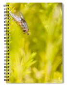 Fly Insect In Amongst A Flurry Of Yellow Leaves Spiral Notebook