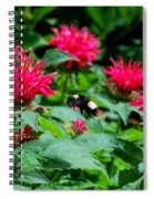 Flying Bee With Bee Balm Flowers Spiral Notebook