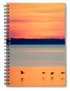 Flying North - Wildlife Lighter Spiral Notebook