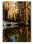 Footbridge Over Swamp, Magnolia Spiral Notebook
