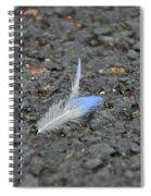 Found Feather Spiral Notebook