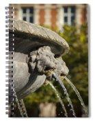 Fountain - Place Des Vosges Spiral Notebook