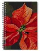 Franci's Poinsettia Spiral Notebook