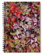 Frost On Autumn Tundra Spiral Notebook
