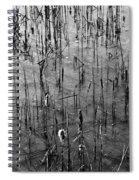 Frozen Lake Spiral Notebook