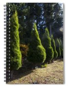 Funeral Cypress Trees Spiral Notebook