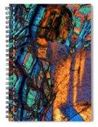 Gabbro Spiral Notebook