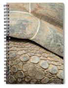 Galapagos Turtle Spiral Notebook