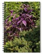Garden Color At Woodward Park 8f Spiral Notebook