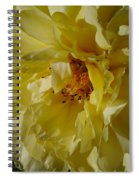 Garden Lady Spiral Notebook