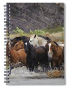 Gaucho With Herd Of Horses Spiral Notebook