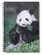 Giant Panda 1 Spiral Notebook