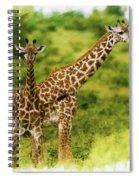Mom Giraffe And Little Joey Spiral Notebook