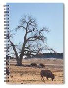Give Me A Home Where The Buffalo Roam Spiral Notebook