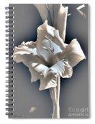 Gladiolus Named Nova Lux Spiral Notebook