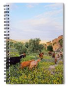Goats In Fes In Morocco Spiral Notebook