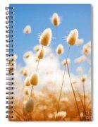 Golden Field Spiral Notebook