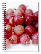 Gooseberries Spiral Notebook
