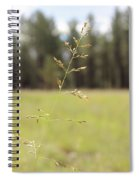 Grassy Meadow Spiral Notebook