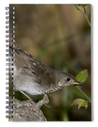 Gray-cheeked Thrush Spiral Notebook