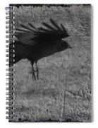 Gray Spiral Notebook
