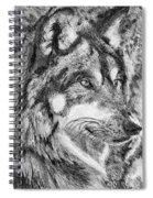 Gray Wolf Watches And Waits Spiral Notebook