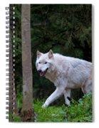 Gray Wolf White Morph Spiral Notebook
