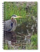 Great Blue Heron At Deboville Slough 2 Spiral Notebook