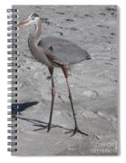 Great Blue Heron On The Beach Spiral Notebook