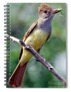 Great Crested Flycatcher With Captured Spiral Notebook