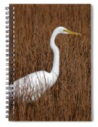 1- Great Egret Spiral Notebook