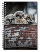 Great Horned Owl Chicks Spiral Notebook