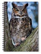 Great Horned Owl Spiral Notebook