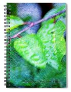 Green Leaf As A Painting Spiral Notebook