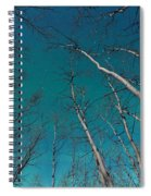 Green Swirls Of Northern Lights Over Boreal Forest Spiral Notebook