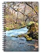 Greer Spring  Spiral Notebook