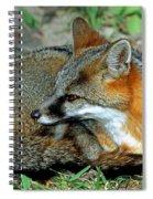 Grey Fox Spiral Notebook